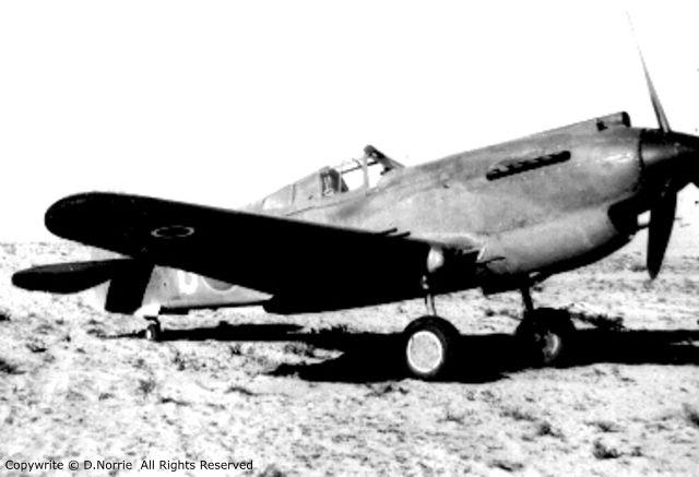 Curtiss P-40 Ak488