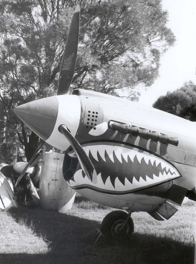 Curtiss P-40 Pic103