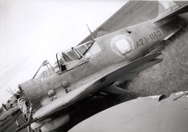 Curtiss P-40 Pic106