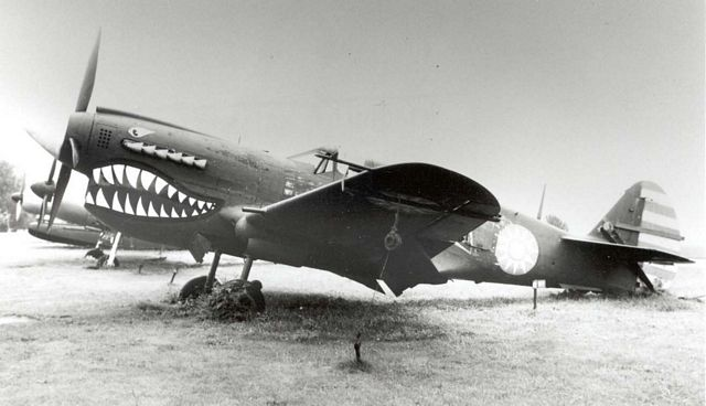 Curtiss P-40 Pic016