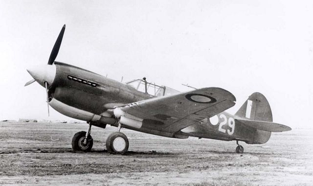 Curtiss P-40 Pic023