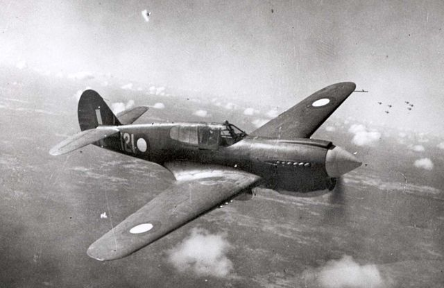 Curtiss P-40 Pic029