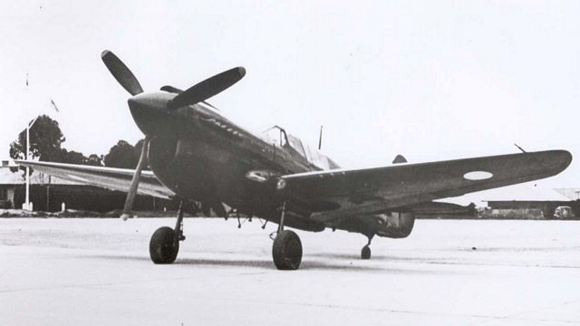 Curtiss P-40 Pic050