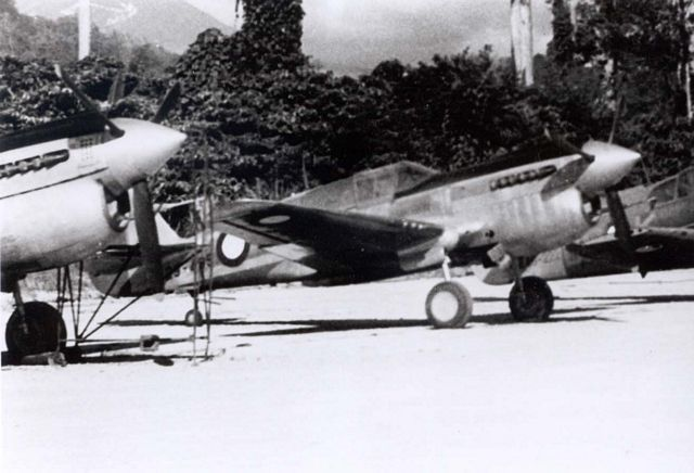 Curtiss P-40 Pic052