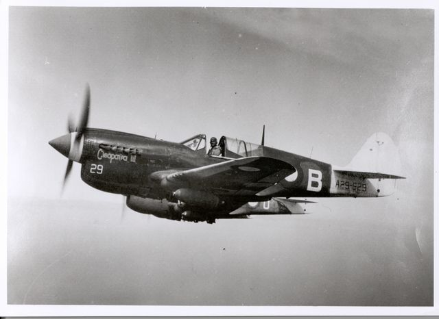 Curtiss P-40 Pic018