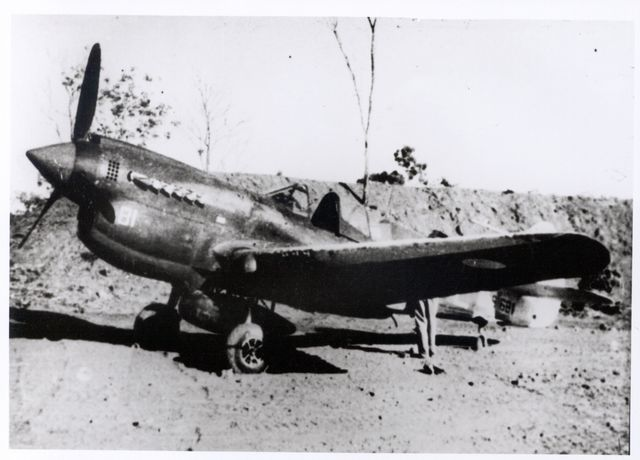 Curtiss P-40 Pic041