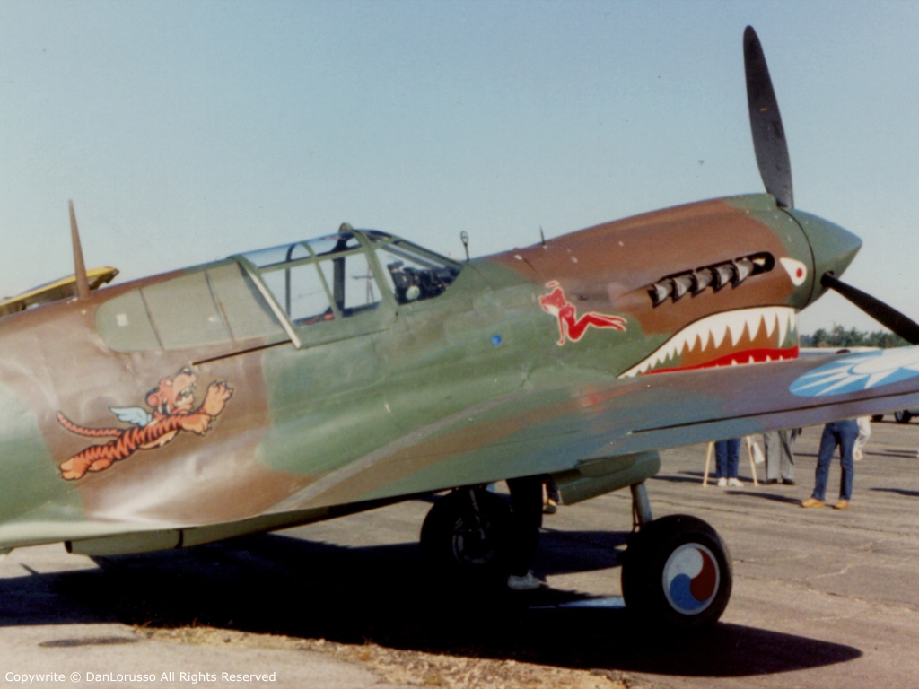 P-40 Warhawk Wallpaper